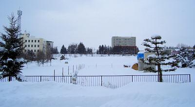 1/13:オホブラ百貨店の事務所駐車場から見た景色