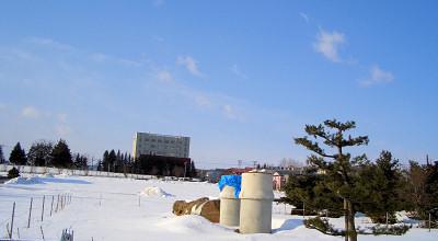 3/1:オホブラ百貨店の事務所駐車場から見た景色