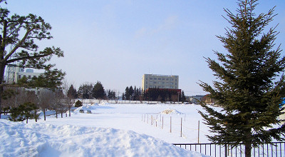 3/3:オホブラ百貨店の事務所駐車場から見た景色