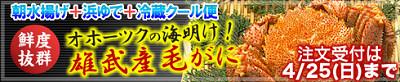 オホブラ百貨店の海明け【雄武産毛がにまつり】