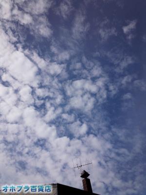 9/2:オホブラ百貨店・今朝の北見市