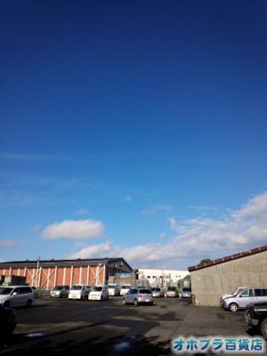 10/03:オホブラ百貨店・今朝の北見市のタマネギ倉庫