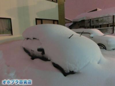 1/23:オホブラ百貨店・雪の模様