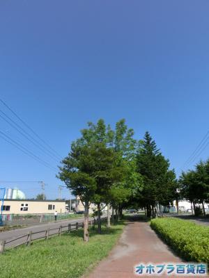 8/3:オホブラ百貨店・今朝の北見市