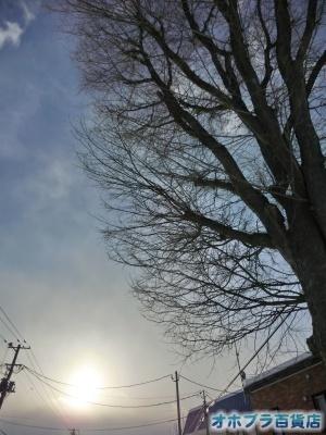 01/11:オホブラ百貨店・今朝の北見市