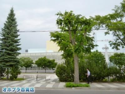 07/06:オホブラ百貨店・自転車通勤