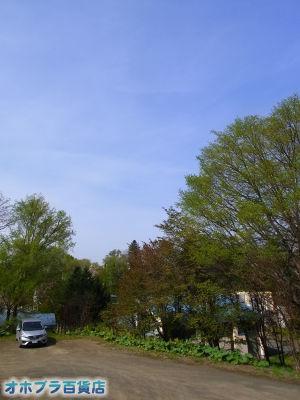 5-17/オホブラ百貨店・今朝の北見市