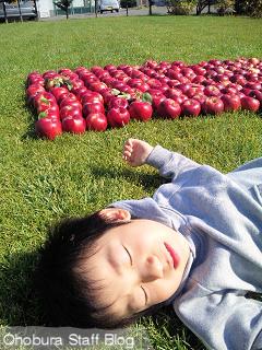 林檎と少年