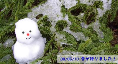 5/10:5月の雪で雪だるま