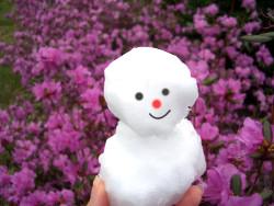 5月の雪でゆきだるま