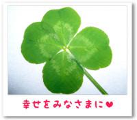 5/15:幸せの四つ葉のクローバー