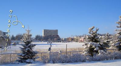 12/12:北見工大近辺の朝の雪景色