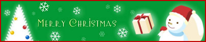 12/25:メリークリスマス