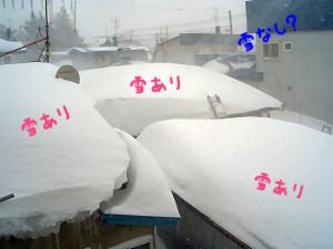 02/21:北見地方は吹雪です