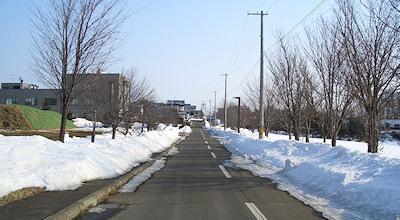 03/17:オホブラ百貨店の事務所の駐車場横の道
