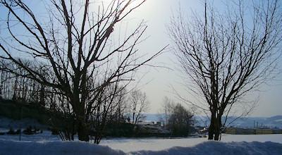 03/17:オホブラ百貨店の事務所の駐車場横の景色