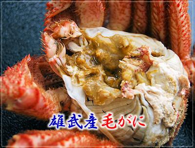 オホーツク海明けの雄武産毛がに:蟹みそたっぷり