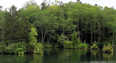 08/02:阿寒湖観光船からの景色