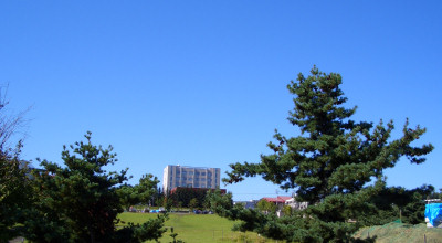 09/02:オホブラ百貨店の事務所駐車場から見た景色