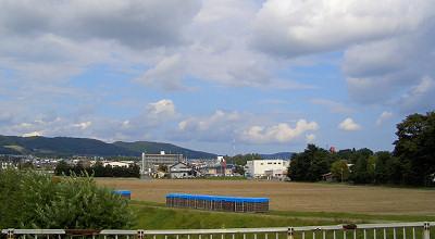 09/19:北見市立光西中学校横のたまねぎ畑