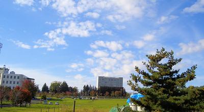 10/07:オホブラ百貨店の駐車場付近から見た景色