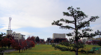 10/15:オホブラ百貨店の駐車場付近から見た景色