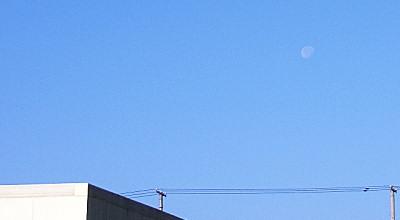11/06:朝の月