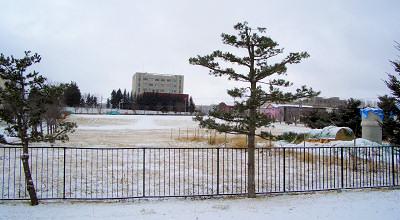 12/03:オホブラ百貨店の事務所駐車場から見た景色