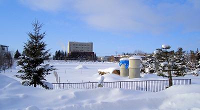 1/14:オホブラ百貨店の事務所駐車場から見た景色