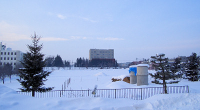 1/20:オホブラ百貨店の事務所駐車場から見た景色