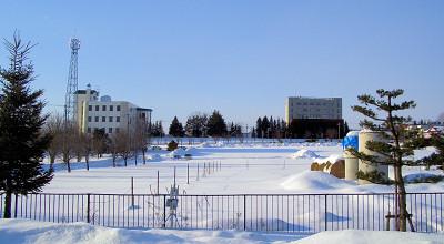 1/28:オホブラ百貨店の事務所駐車場から見た景色