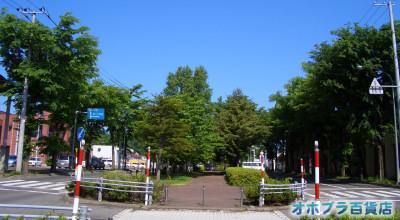 6/18:オホブラ百貨店:小町泉通り