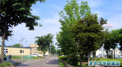 6/29:オホブラ百貨店:小町泉通り