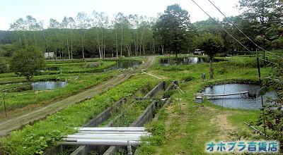 成田養魚場(河東郡士幌町)