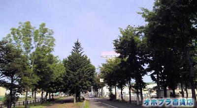 8/27:オホブラ百貨店:小町泉通り