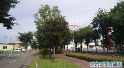 8/31:オホブラ百貨店:小町泉通り