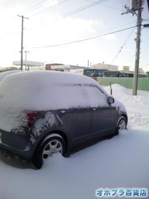 1/17:オホブラ百貨店・車上の雪