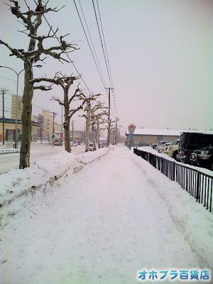 2/18:オホブラ百貨店・南大通り