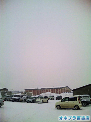 2/18:オホブラ百貨店・たまねぎ倉庫