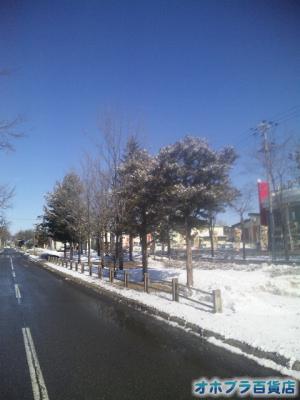 3/28:オホブラ百貨店・小町泉通り