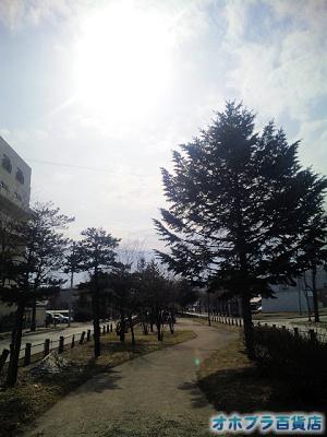 4/11:オホブラ百貨店・小町泉通り