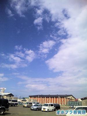 6/10:オホブラ百貨店・玉ねぎ倉庫