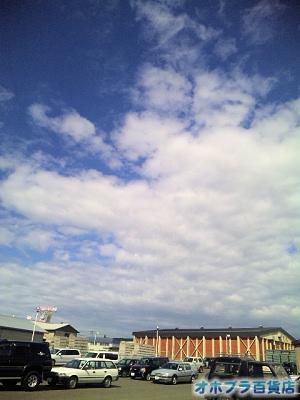 7/5:オホブラ百貨店・玉ねぎ倉庫
