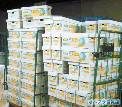 7/21:オホブラ百貨店・パラボのメロンの入荷を待っている空箱の山