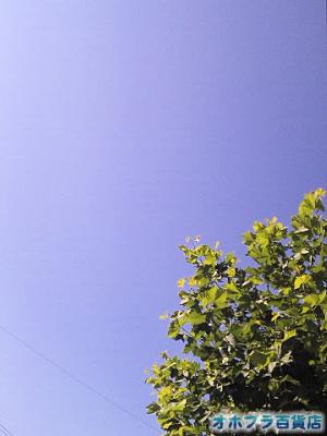 9/1:オホブラ百貨店・南大通りから見た空
