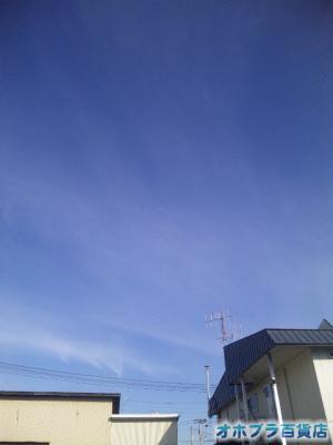 10/28:オホブラ百貨店・玉ねぎ倉庫