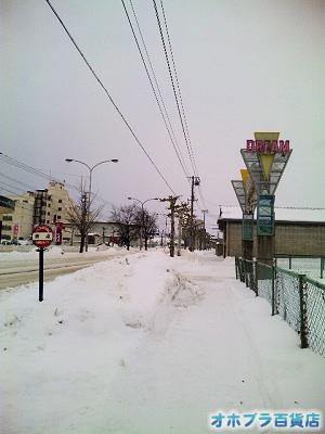 1/5:オホブラ百貨店・南大通り