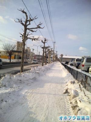 2/16:オホブラ百貨店・南大通りの排雪後