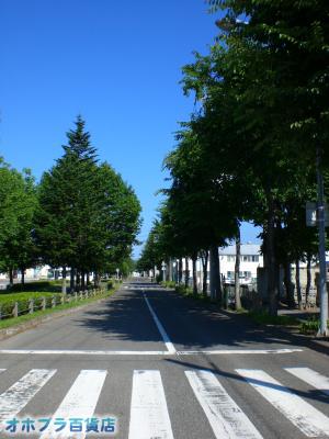 7/17:オホブラ百貨店・小町泉通り