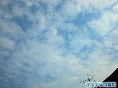 7/18:オホブラ百貨店・事務所の上の空